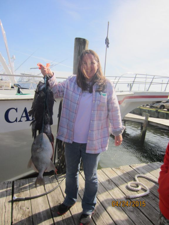 Fishing april 24th 2015 capt stacy fishing center for Capt stacy fishing center