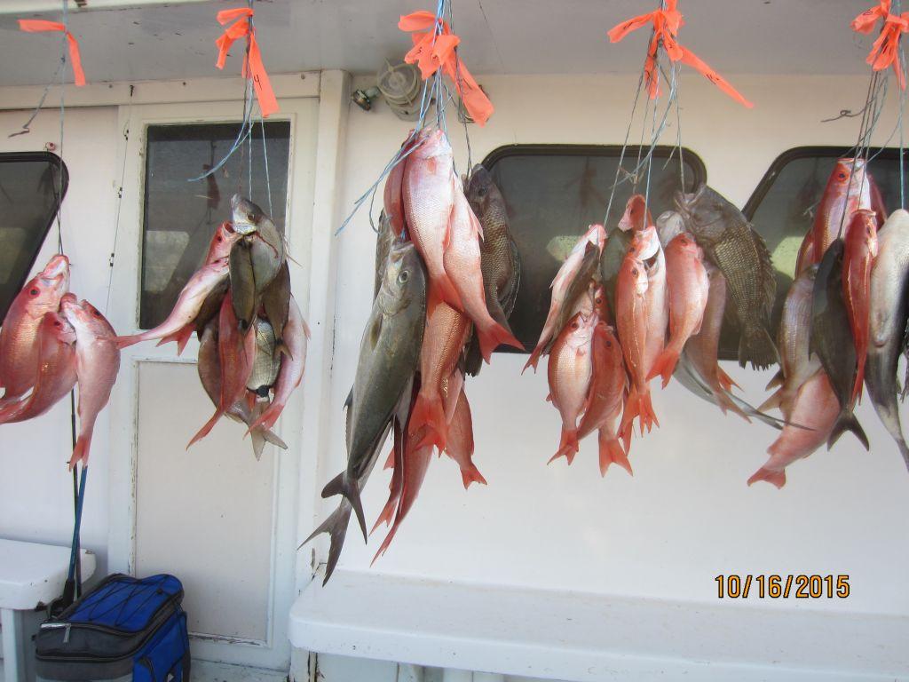 Женщина рыбы, предсказание на октябрь самочувствие и настрой рыбы в октябре отношения супругов и партнёрское взаимодействие в октябре года не будут столь безоблачными.