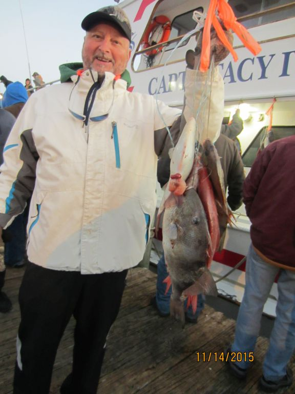 Fishing november 14th 2015 capt stacy fishing center for Capt stacy fishing center
