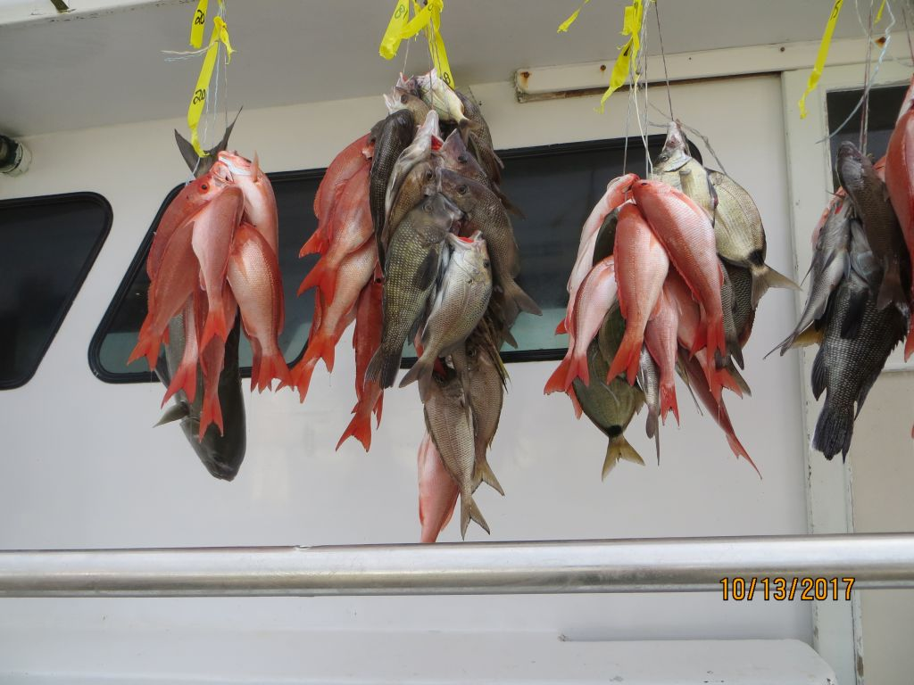 Женщина-рыбы: гороскоп на октябрь астрологи уверяют, что в октябре женщинам-рыбам не придется скучать ни минуты.